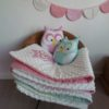 plaid hibou minky rose